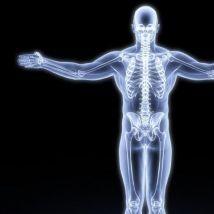 怎样促进骨骼健康?四剂良方或帮助您强健骨骼,请查收。